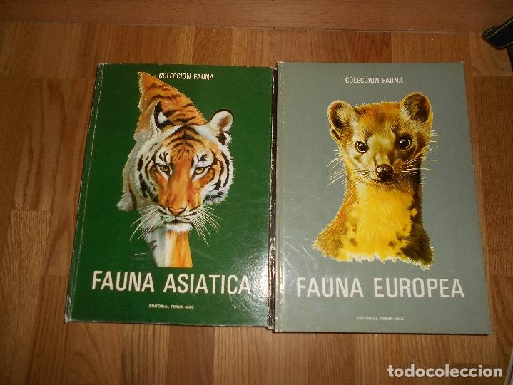 Libros de segunda mano: COLECCIÓN FAUNA DE MUNDO POR CONTINENTES 5 TOMOS EDITORIAL TIMUN MAS 1970 BUEN ESTADO - Foto 4 - 220728457