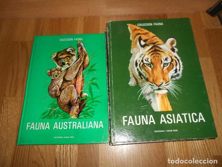 Libros de segunda mano: COLECCIÓN FAUNA DE MUNDO POR CONTINENTES 5 TOMOS EDITORIAL TIMUN MAS 1970 BUEN ESTADO - Foto 6 - 220728457