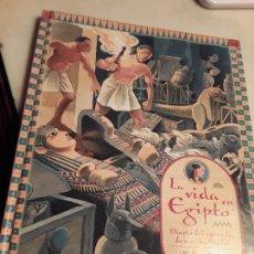 Libros de segunda mano: LA VIDA EN EGIPTO - DIARIO DEL APRENDIZ DE ESCRIBA NAKHT-. BELLAMENTE ILUSTRADO. 33X26! ÚNICO EN TC!. Lote 134094906