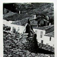 Libros de segunda mano: PINILLA DE LOS BARRUECOS. BURGOS. AÑO: 1975.. Lote 153367926