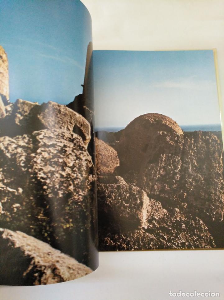 Libros de segunda mano: EROS EN GRECIA. JOHN BOARDMAN Y EUGENIO LA ROCCA. EDICIONES DAIMON. ARM20 - Foto 2 - 154213786