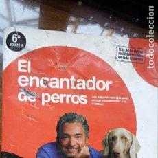 Libros de segunda mano: EL ENCANTADOR DE PERROS. Lote 154496278