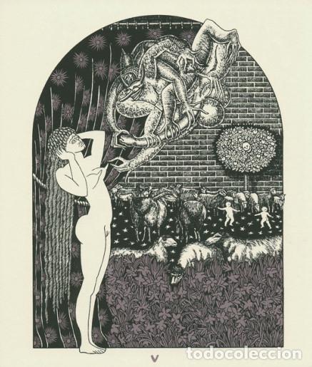 Libros de segunda mano: Virgo potens - Rossetti, Ana - Foto 2 - 154935278