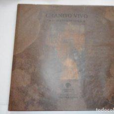 Libros de segunda mano: ALBERTO SCHOMMER GRANITO VIVO Y93024. Lote 155096682