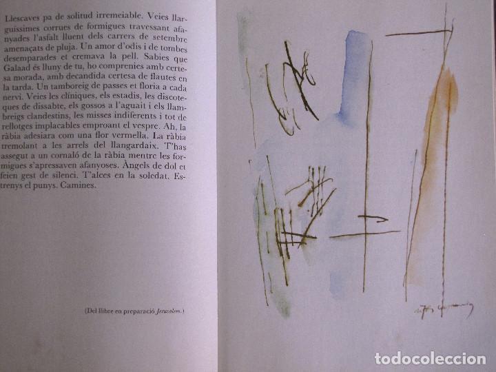 Libros de segunda mano: LIBRO EDITADO POR EDITORIAL DRUIDA, POEMAS JOSEP M. LLOMPARET y 5 ilustraciones de Rafols Casamada - Foto 2 - 155520442
