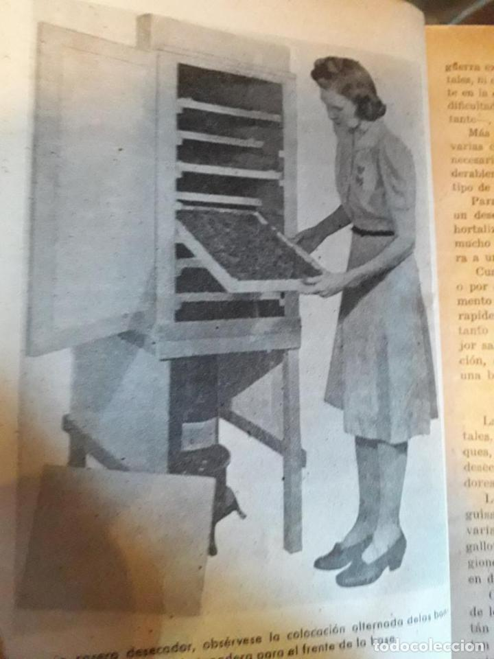 Libros de segunda mano: Hojas divulgadoras Ecuadernadas - Foto 6 - 155661474
