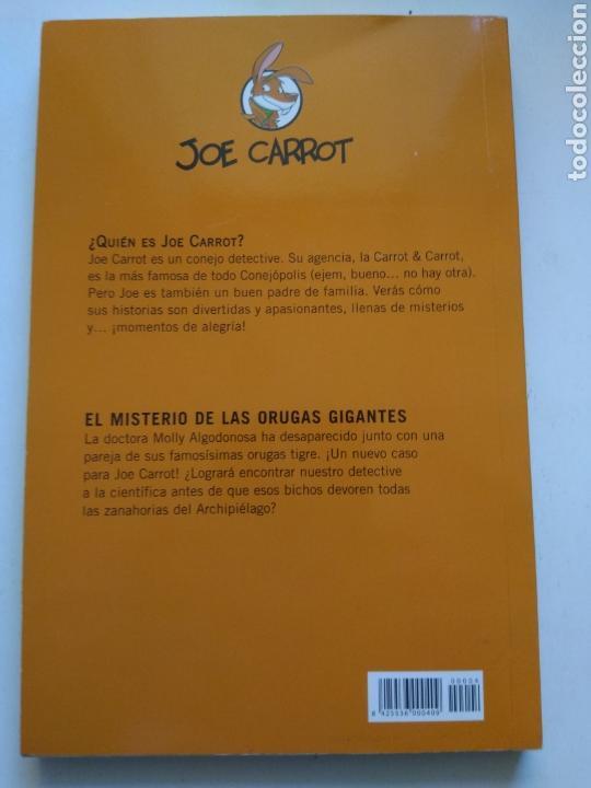 Libros de segunda mano: EL MISTERIO DE LOS LUGARES GIGANTES/JOE CARROT - Foto 2 - 156010997