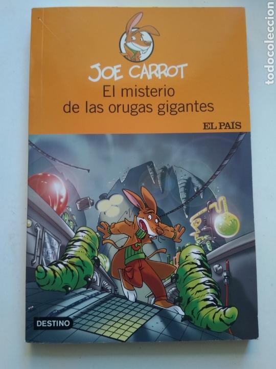 EL MISTERIO DE LOS LUGARES GIGANTES/JOE CARROT (Libros de Segunda Mano - Literatura Infantil y Juvenil - Otros)