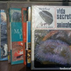 Libros de segunda mano: MARAVILLAS WALT DISNEY. Lote 156755910
