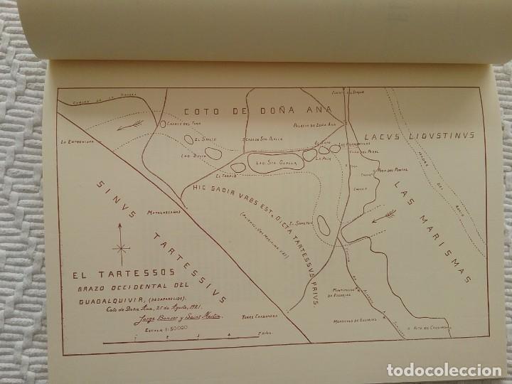 Libros de segunda mano: Arqueología Huelva Doñana Facsímil - Foto 3 - 156775110