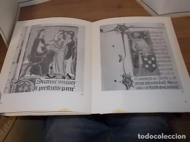 Libros de segunda mano: ELS REIS DE MALLORCA I EL SEU POBLE (1229-1349) .SA LLOTJA. 1983. ARBRE GENEALÒGIC DE LA DINASTIA.. - Foto 11 - 157774482