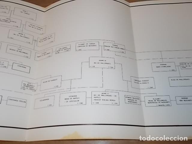 Libros de segunda mano: ELS REIS DE MALLORCA I EL SEU POBLE (1229-1349) .SA LLOTJA. 1983. ARBRE GENEALÒGIC DE LA DINASTIA.. - Foto 18 - 157774482