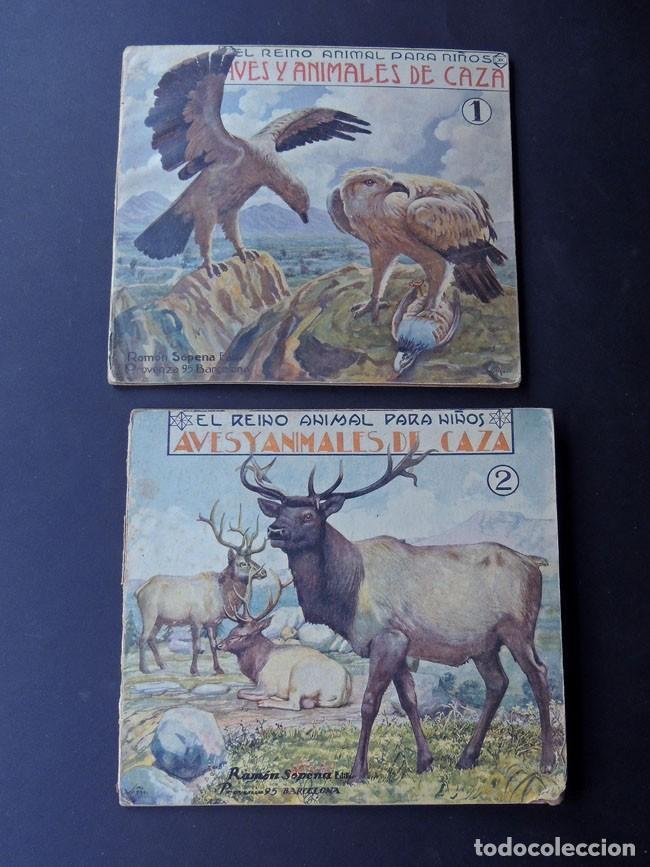 Libros de segunda mano: EL REINO ANIMAL PARANIÑOS / 5 EJEMPLARES / RAMON SOPENA - Foto 3 - 157912022
