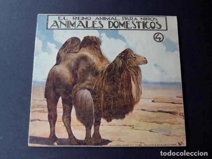 Libros de segunda mano: EL REINO ANIMAL PARANIÑOS / 5 EJEMPLARES / RAMON SOPENA - Foto 5 - 157912022