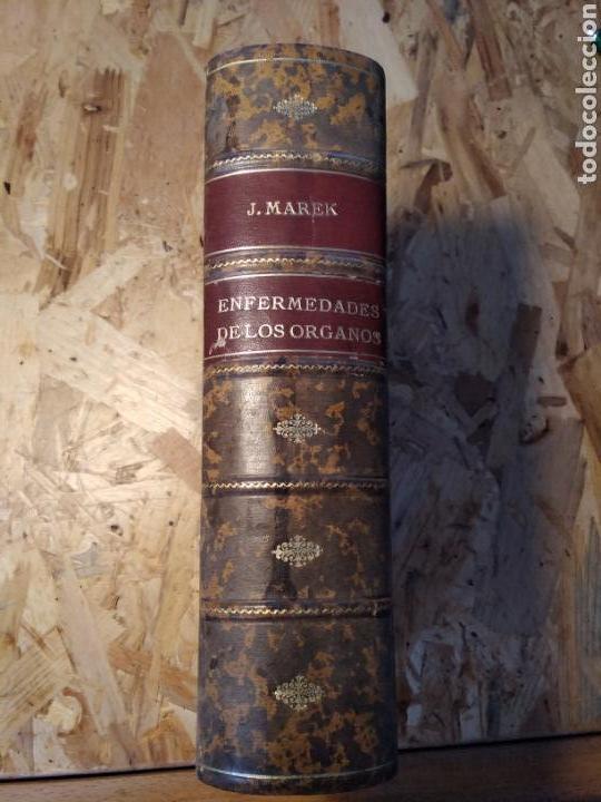 ENFERMEDADES DE LOS ÓRGANOS MAREK PATOLOGÍA VETERINARIA (Libros de Segunda Mano - Ciencias, Manuales y Oficios - Otros)