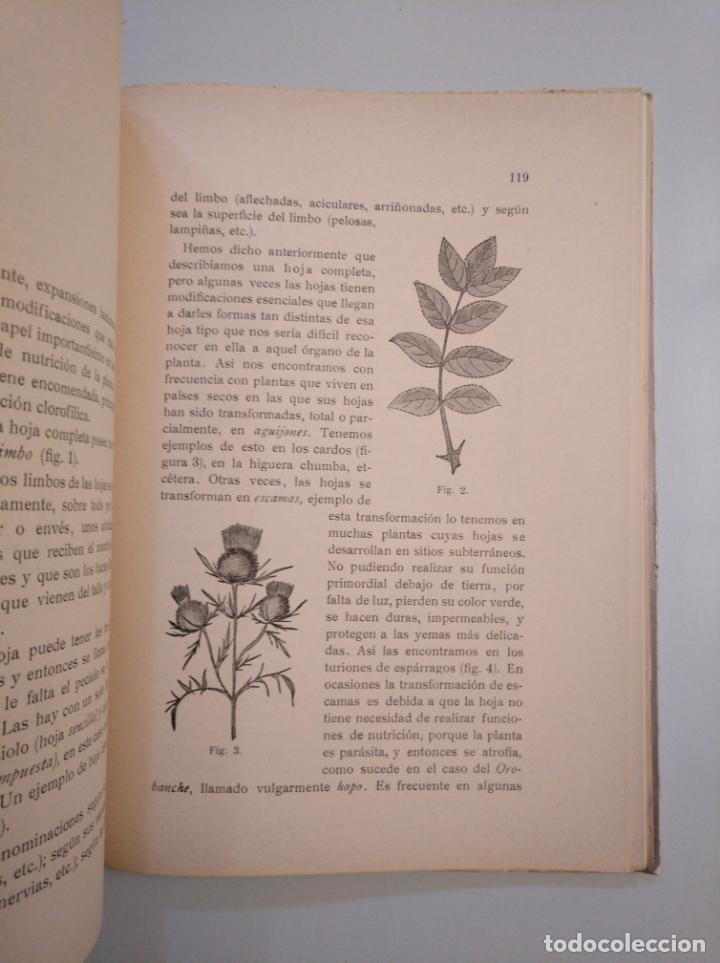 Libros de segunda mano: CURSO PRÁCTICO DE CIENCIAS NATURALES. TOMÁS ALVIRA ALVIRA - CSIC, 1952. TDK380 - Foto 2 - 159180922