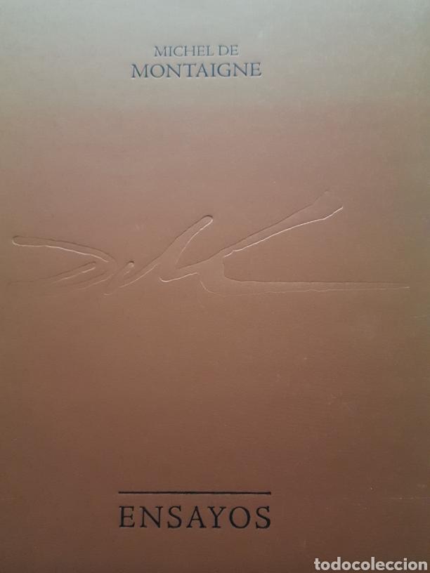 LOS ENSAYOS DE MONTAIGNE ILUSTRACIONES DE SALVADOR DALI. EDICIÓN ÚNICA, LIMITADA Y NUMERADA. 2005. (Libros de Segunda Mano - Bellas artes, ocio y coleccionismo - Otros)