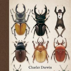 Libros de segunda mano: AUTOBIOGRAFÍA. - DARWIN, CHARLES.. Lote 159928378