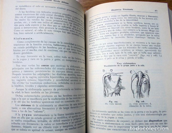 Libros de segunda mano: TRATADO DE OBSTETRICIA VETERINARIA.CRISTINO GARCÍA ALFONSO. 1944 - Foto 4 - 160261242