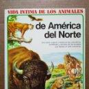 Libros de segunda mano: VIDA ÍNTIMA DE LOS ANIMALES DE AMÉRICA DEL NORTE (AURIGA CIENCIA/RIALP JUNIOR, 1990). 64 PÁGINAS.. Lote 160813350