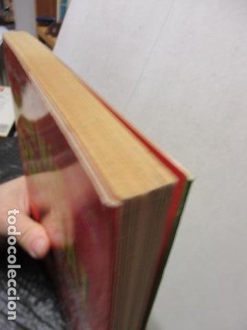 Libros de segunda mano: AUN MAS BESTIA ! LOS CHISTES DE INTERNET. HUMOR ONLINE 2 - Foto 3 - 163516362