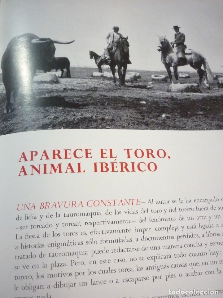 Libros de segunda mano: LIBRO TAUROMAQUIA. EDICIONES NAUTA. FOTOS F. CATALÁ. PRIMERA EDICION 1962 - Foto 5 - 163603830