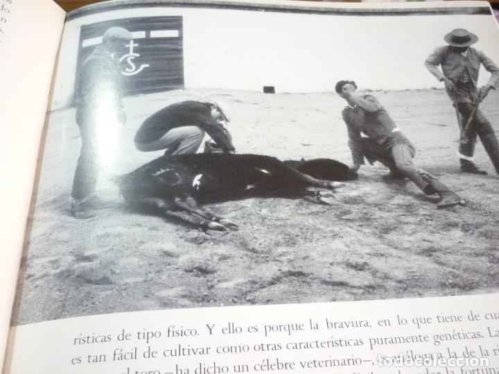 Libros de segunda mano: LIBRO TAUROMAQUIA. EDICIONES NAUTA. FOTOS F. CATALÁ. PRIMERA EDICION 1962 - Foto 7 - 163603830