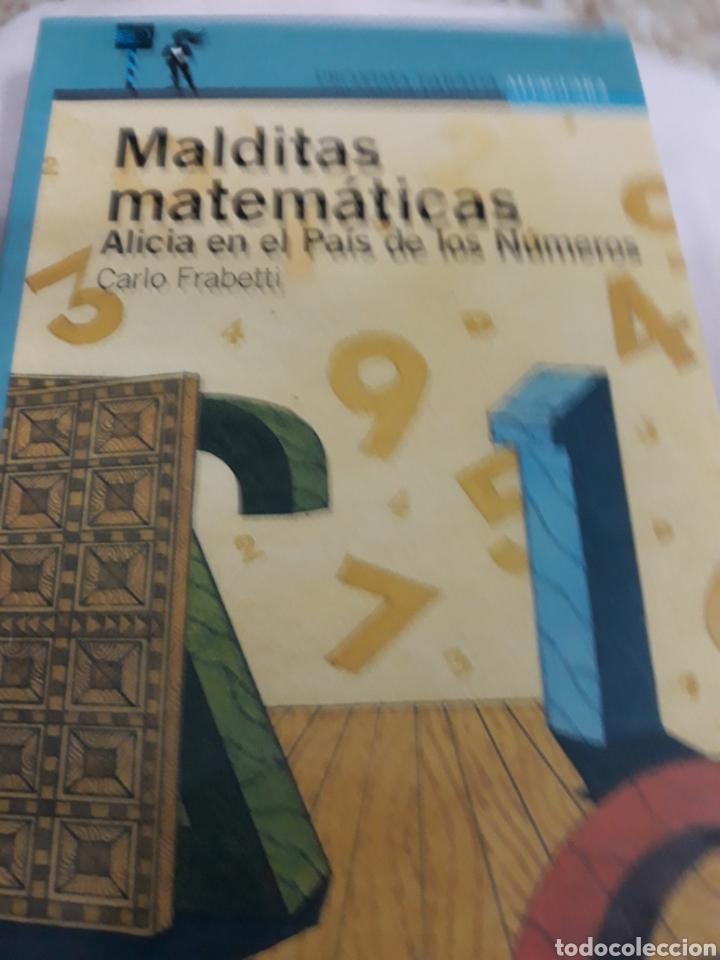 Libros de segunda mano: Libro Núm.12 MALDITAS MATEMÁTICAS DE CARLO FRABETTI - Foto 2 - 164377184