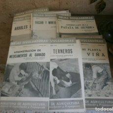 Libros de segunda mano: HOJAS DIVULGADORAS, MINISTERIO DE AGRICULTURA AÑOS1948-49, 31 NUMEROS. Lote 165057898