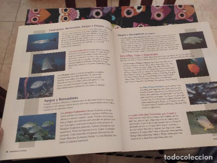 Libros de segunda mano: ESPECTACULAR TOMO CURSO DE BUCEO EN ESPAÑOL ADVENTURES IN DIVING MANUAL 2001 - Foto 12 - 165491830