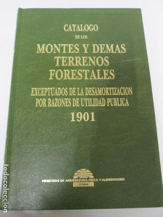 Libros de segunda mano: RECTIFICACION DEL CATALOGO DE LOS MONTES PUBLICOS 1877-1896. CATALOGO DE LOS MONTES Y DEMAS TERRENOS - Foto 27 - 167875136