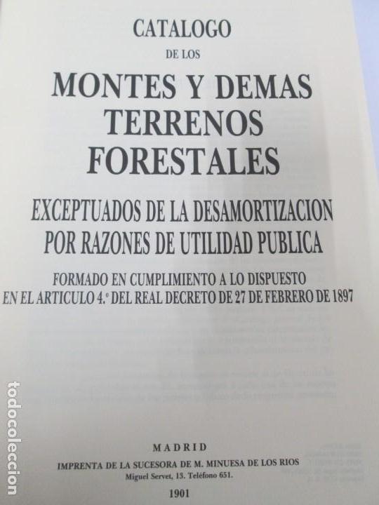 Libros de segunda mano: RECTIFICACION DEL CATALOGO DE LOS MONTES PUBLICOS 1877-1896. CATALOGO DE LOS MONTES Y DEMAS TERRENOS - Foto 28 - 167875136