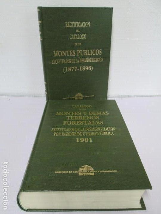 RECTIFICACION DEL CATALOGO DE LOS MONTES PUBLICOS 1877-1896. CATALOGO DE LOS MONTES Y DEMAS TERRENOS (Libros de Segunda Mano - Ciencias, Manuales y Oficios - Otros)