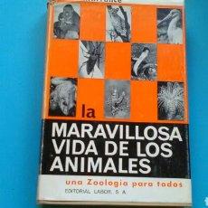 Libros de segunda mano: MARAVILLOSA VIDA DE LOS ANIMALES R.H.FRANCÉ. ED.LABOR. Lote 168220969