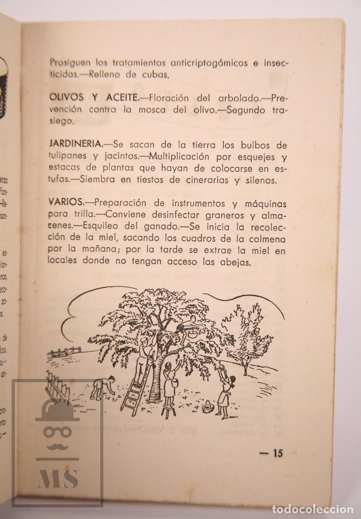 Libros de segunda mano: Libro Pequeña Guía del Agricultor - Servicios Agronómicos del Nitrato de Chile, 1951 - Foto 3 - 168670016