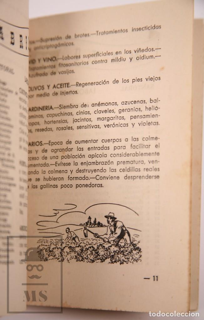 Libros de segunda mano: Libro Pequeña Guía del Agricultor - Servicios Agronómicos del Nitrato de Chile, 1951 - Foto 4 - 168670016