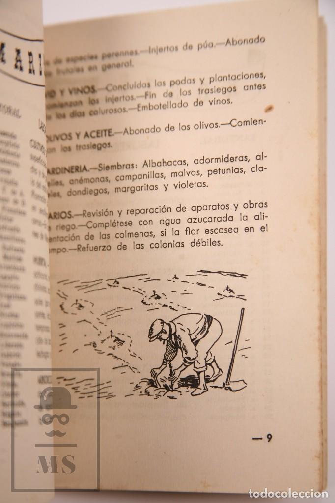Libros de segunda mano: Libro Pequeña Guía del Agricultor - Servicios Agronómicos del Nitrato de Chile, 1951 - Foto 6 - 168670016