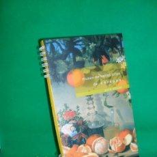 Libros de segunda mano: MUSEO BELLAS ARTES DE CÓRDOBA, GUÍA OFICIAL, ED. JUNTA DE ANDALUCÍA. Lote 168733392