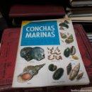 Libros de segunda mano: UN LIBRO DE ORO DE ESTAMPAS CONCHAS MARINAS, NÚMERO 32. Lote 169201422