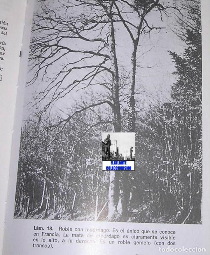 Libros de segunda mano: EL LIBRO DE LOS MUNDOS OLVIDADOS - ROBERT CHARROUX - ENIGMAS MISTERIOS LEYENDAS - NUEVO - 21 € - Foto 8 - 171111897