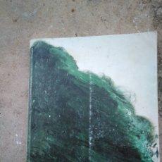 Libros de segunda mano: TWOMBLY (PINTURA, CERÁMICA...). Lote 172938928