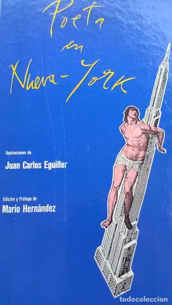 POETA EN NUEVA YORK, RARO, FEDERICO GARCIA LORCA Y JUAN CARLOS EGUILLOR (Libros de Segunda Mano (posteriores a 1936) - Literatura - Otros)