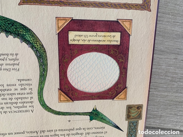Libros de segunda mano: EL GRAN LIBRO DE LOS DRAGONES – Editado por: DUGALD STEER - Foto 7 - 173815700