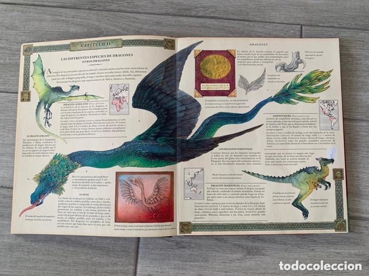 Libros de segunda mano: EL GRAN LIBRO DE LOS DRAGONES – Editado por: DUGALD STEER - Foto 10 - 173815700