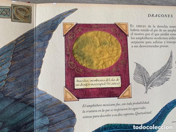 Libros de segunda mano: EL GRAN LIBRO DE LOS DRAGONES – Editado por: DUGALD STEER - Foto 11 - 173815700