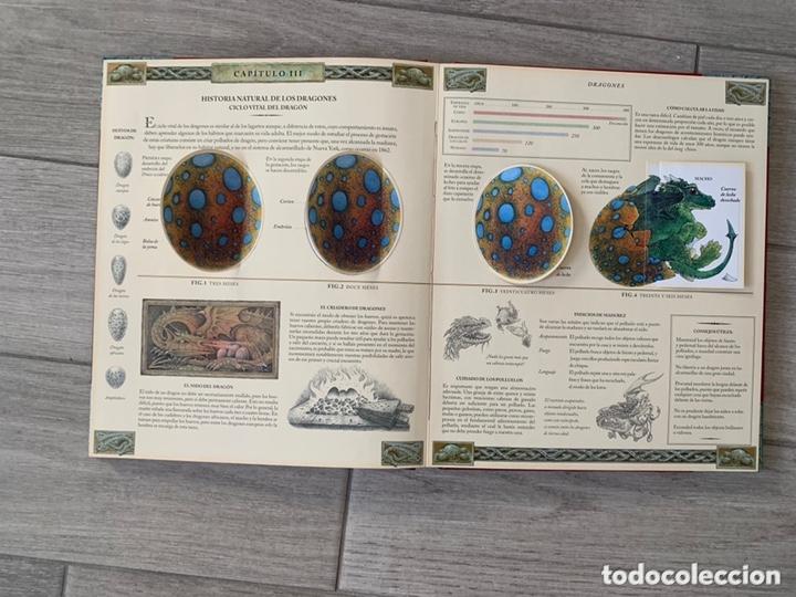 Libros de segunda mano: EL GRAN LIBRO DE LOS DRAGONES – Editado por: DUGALD STEER - Foto 15 - 173815700
