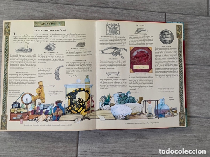 Libros de segunda mano: EL GRAN LIBRO DE LOS DRAGONES – Editado por: DUGALD STEER - Foto 24 - 173815700