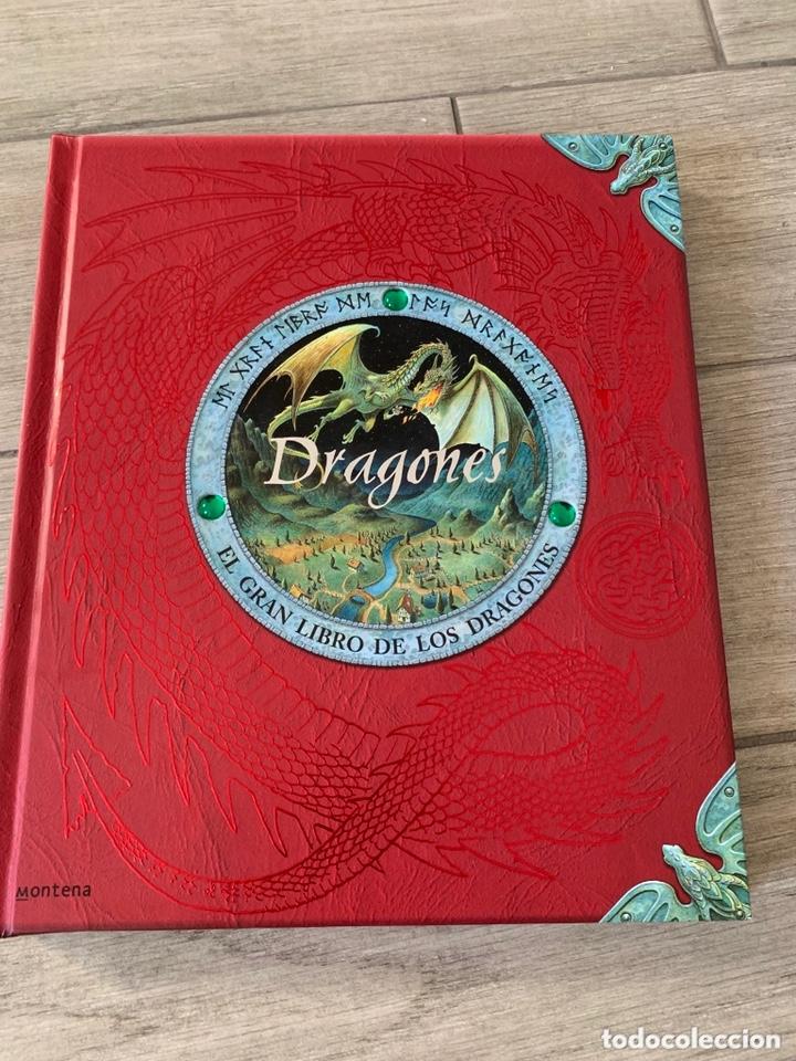 EL GRAN LIBRO DE LOS DRAGONES – EDITADO POR: DUGALD STEER (Libros de Segunda Mano - Literatura Infantil y Juvenil - Otros)