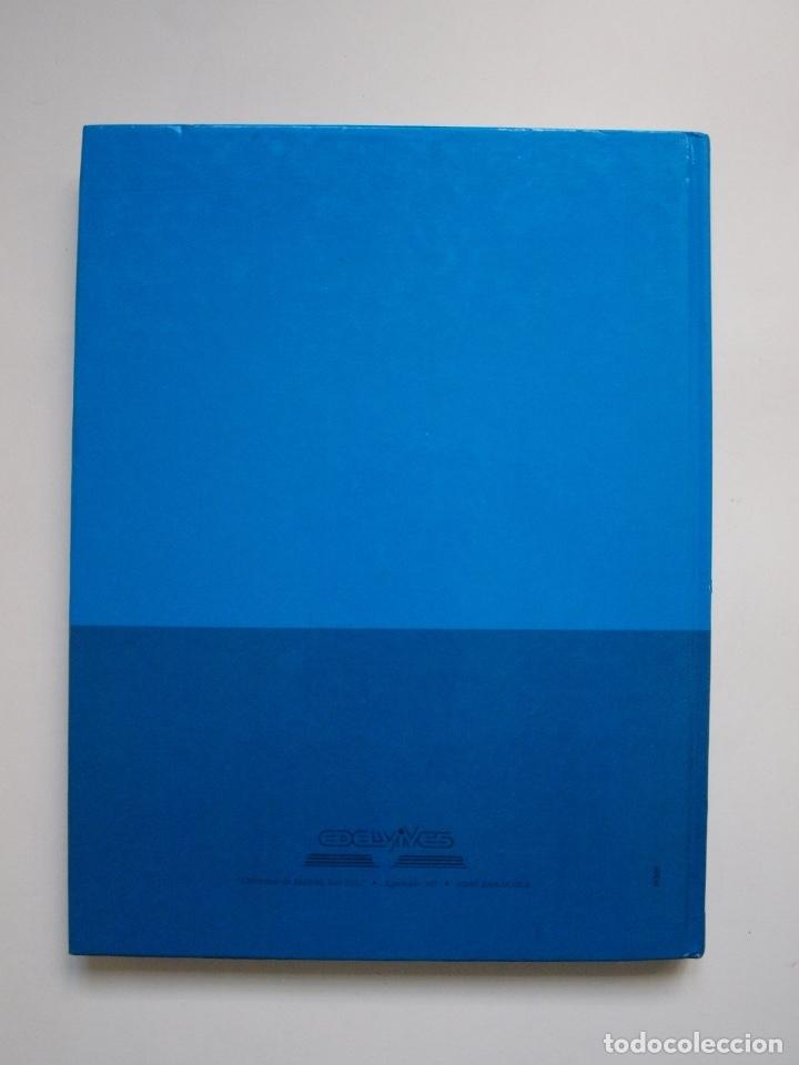 Libros de segunda mano: LOS CABALLEROS DEL REY ARTURO - CLÁSICOS COLOR EDELVIVES - ILUSTRACIONES DE GIANNI - LUÍS VIVES 1988 - Foto 9 - 175087864