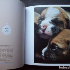 Libros de segunda mano: CACHORROS RECIÉN NACIDOS. NEWBORN PUPPIES: DOGS IN THEIR FIRST THREE WEEKS. Lote 175873733